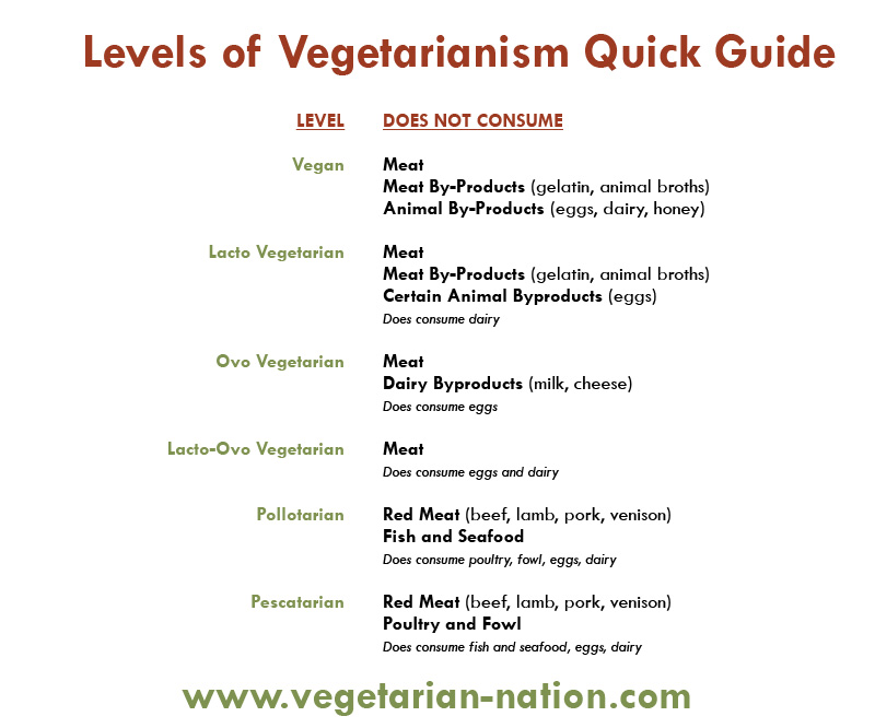 Argumentative Essay on Veganism   ESL    Section     Professor                   Sample Argumentative Essay